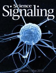Unha portada da revista Science